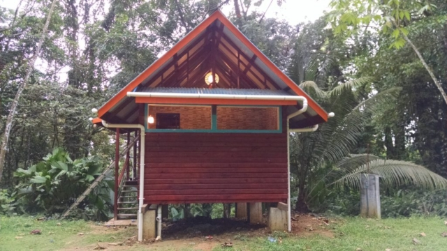 Exterior view of the Tree Cabin